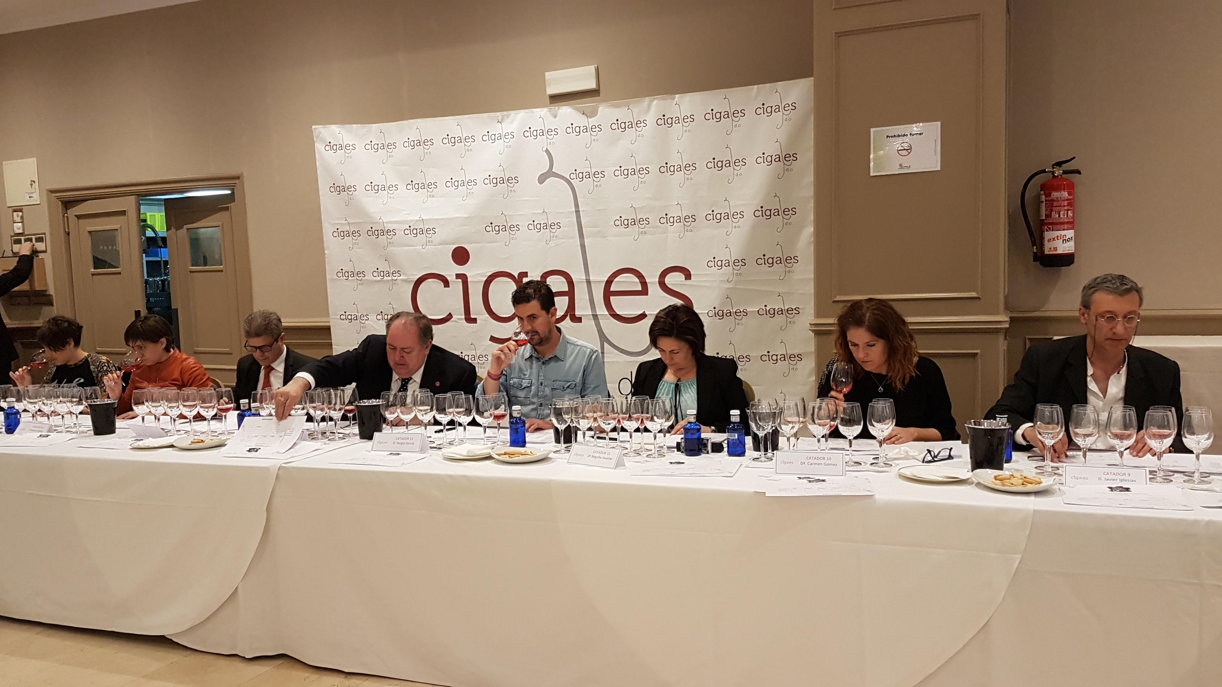 La Denominación de Origen Cigales viaja a  Segovia a calificar la añada 2018