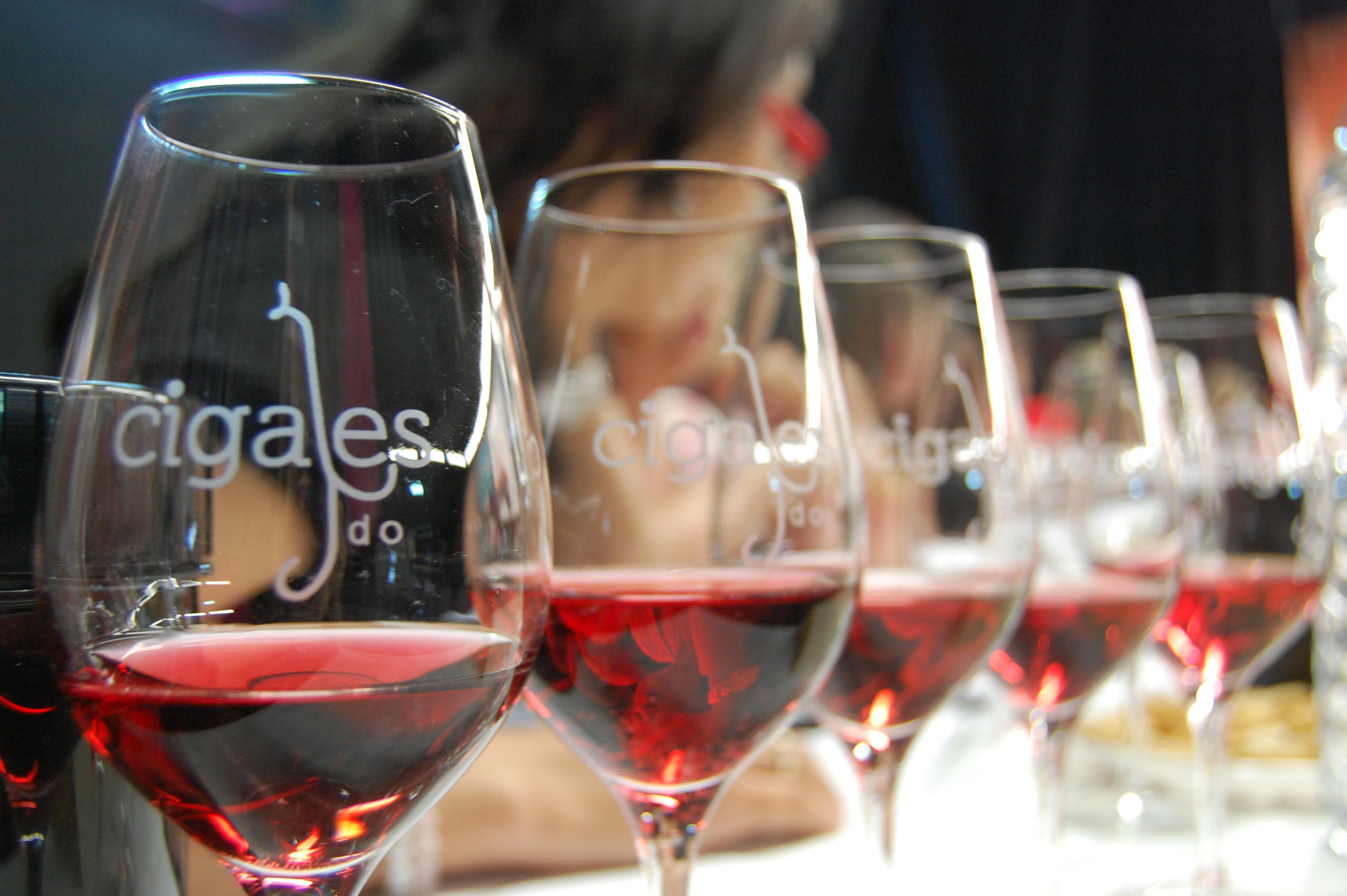 La DO Cigales promociona la próxima semana sus vinos en Andalucía