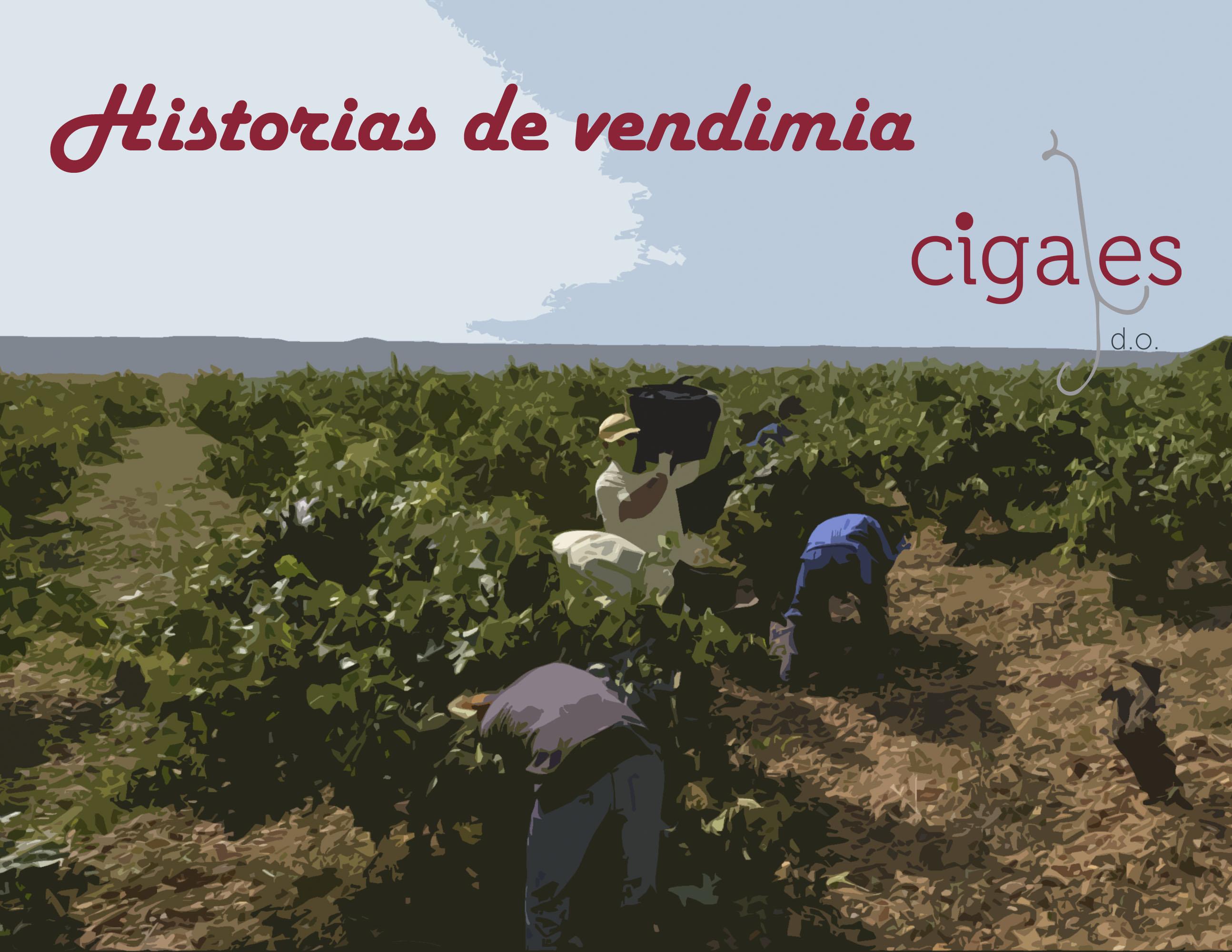 Historias de Vendimia DO Cigales con nuestras bodegas a solo un click